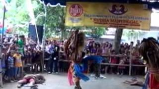 getlinkyoutube.com-KUDHO MANUNGGAL CEBONGAN Bbak 1 Putra