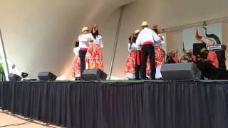 Caribfest in Norfolk VA 2014
