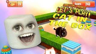 getlinkyoutube.com-Marshmallow plays Kitty in the Box!