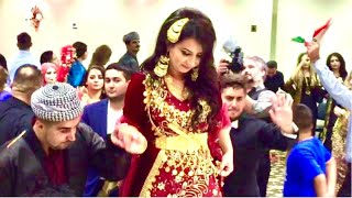 getlinkyoutube.com-Kurdish Wedding Selim and Ravin