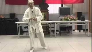 getlinkyoutube.com-2005年鄭子太極拳鞠鴻賓大師調教退步跨虎至彎弓射虎拳架 -2