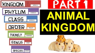 Animal Kingdom Classification Part - 1 | SSC , Railway , State PSC , Other Govt Exams