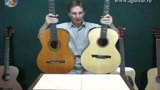 гитара, выбор гитары: виды гитар и свойства 2/2