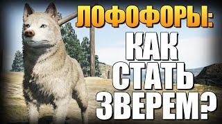 getlinkyoutube.com-GTA 5 - Как Играть за Животных? (Лофофоры) #6
