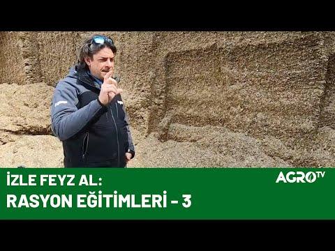 Uygulamalı Rasyon ve Silaj Anlatımı / AGRO TV