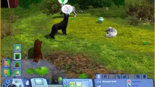 getlinkyoutube.com-Sims 3 Pets: Smith Wolf Pack video 1
