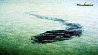 getlinkyoutube.com-Гигантский подводный змей в Крыму. Карадагский змей