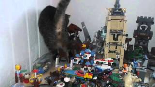 getlinkyoutube.com-Catzilla