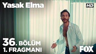 Yasak Elma 36. Bölüm Fragmanı  Alihan Zeynep'i Kararından Döndürebilecek mi?