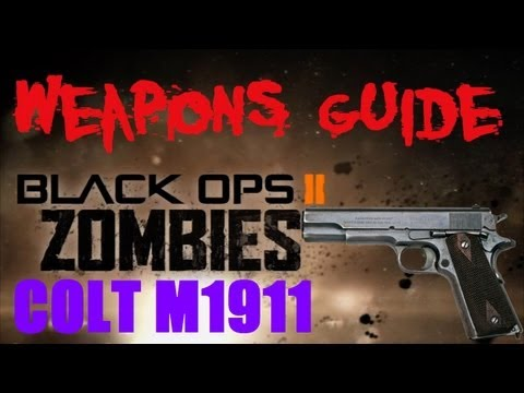 BO2 Zombies M1911 / Mustang and Sally Weapons Guide
