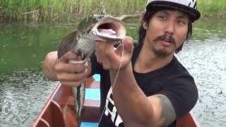 getlinkyoutube.com-วีธีตกปลาด้วยกบยาง - ซีซ่าร์