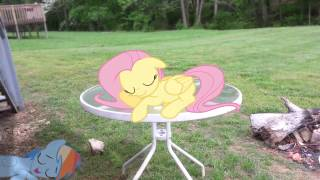 getlinkyoutube.com-My Little Pony in Real Life: Flutters & Dashie Asleep