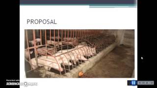 getlinkyoutube.com-Automatic Pig Feeder (Gladys Morales)