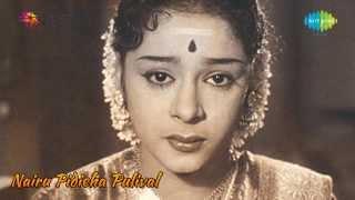 Nairu Pidicha Pulivalu | Ponnaninjittilla Njan song