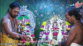 வண்ணை கோட்டையம்பதி ஸ்ரீ சிவசுப்பிரமணியர் கோவில் 2ம் திருவிழா இரவு 30.05.2017