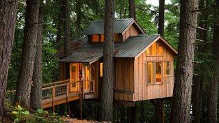 getlinkyoutube.com-Дом на дереве. Жизнь в лесу вдали от цивилизации