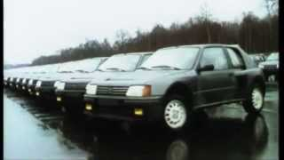 getlinkyoutube.com-Peugeot 205 Turbo 16: 30 anni di Successi