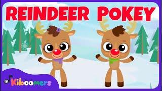 Reindeer Pokey | Christmas Songs for Kids | Reindeer Song | The Kiboomers