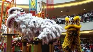 getlinkyoutube.com-CNY 2014 ~ Acrobatic Lion Dance (舞獅 Múa lân) by Kwong Ngai @ Mid Valley MegaMall