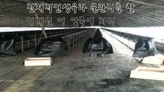 getlinkyoutube.com-딸기 수경 재배 시설과정 입니다