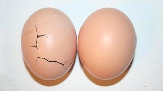 getlinkyoutube.com-Getting Hit In The Balls (Scientific Analysis)