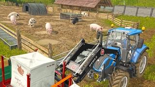 getlinkyoutube.com-Feeding Pigs in UTH17