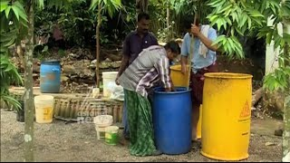 getlinkyoutube.com-Success story Of Organic farming from kattappana Kerala | Kannadi 06 Dec 2015