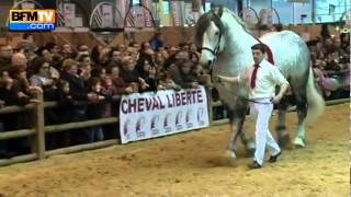 getlinkyoutube.com-خيول محمد السادس في معرض الفلاحه بباريس 2012
