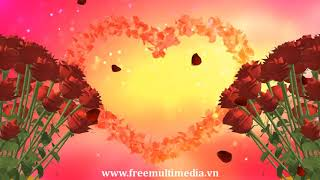 Free Video Background HD - 3D Rose Style