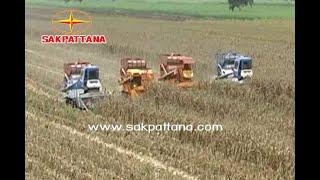 getlinkyoutube.com-รถเก็บเกีี่ยวข้าวโพด มาเป็นทีม /  World 's Corn Harvesting