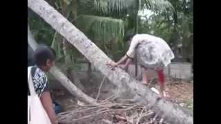getlinkyoutube.com-malayalam funny videos must watch