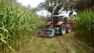 getlinkyoutube.com-Corn Silage by     AGRIxBOY  2008.... 1ºpart