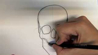 getlinkyoutube.com-How to draw a skull step by step - Things to Draw