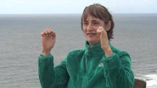 getlinkyoutube.com-New Creation Tai Chi-Qigong For Healing Your Hands: Seniors, Arthritis, Parkinson's, Carpal Tunnel