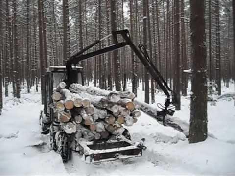 Zrywka drewna
