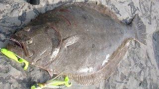 getlinkyoutube.com-Inlet Flounder Fishing - 6-pound Fluke on the Rocks