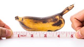 getlinkyoutube.com-Quanto è lungo in genere un pene? La scienza lo sa. GRAZIE SCIENZA
