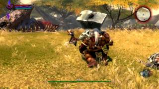 getlinkyoutube.com-Kingdoms of Amalur: Reckoning PC Gameplay *HD* Max Settings