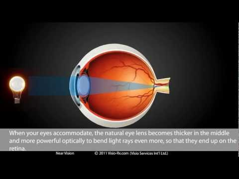 Near Vision in Glasses Explained. How Your Eyewear Helps Improve Your Optical Vision.