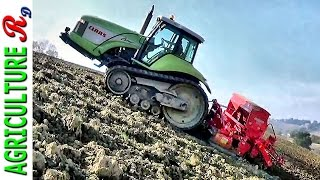 Case Puma 195 + Claas 55 Challenger - Sowing 2015