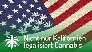 getlinkyoutube.com-USA: Nicht nur Kalifornien legalisiert Cannabis | DHV News #100