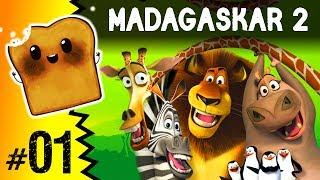 Gry po Polsku: Madagaskar 2 - Król Julian powraca! #1