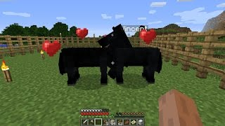 getlinkyoutube.com-Minecraft - Baby Horse!