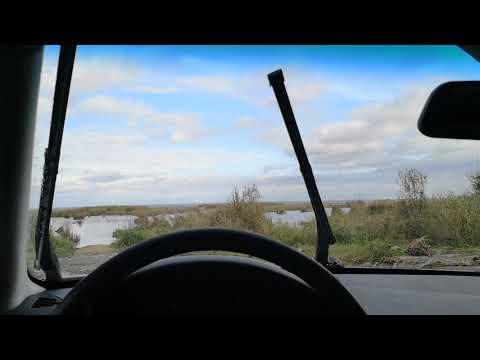 Расположение у Datsun он-ДО моторчика омывателя заднего стекла