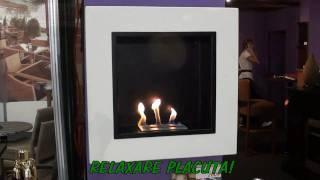 getlinkyoutube.com-Semineu bioetanol Concept pornirea si cum arde flacara