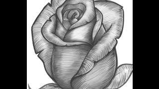 getlinkyoutube.com-تعليم الرسم | تعلم كيف ترسم ورده بطريقه سهله + الخطوات