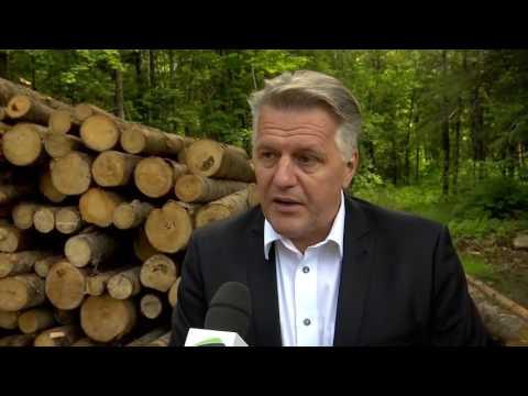 Six millions de dollars supplémentaires par année pour rendre la forêt privée plus productive