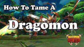 How To Tame A Dragomon