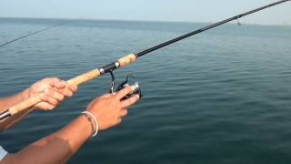 getlinkyoutube.com-Εγγλέζικο real fishing