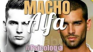 Psicología del Macho Alfa #Psicologia